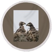 Eaglets Having A Chat Round Beach Towel