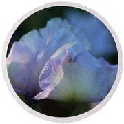 Early Iris Sunshine Round Beach Towel
