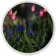 Early Morning Garden Round Beach Towel