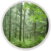 Early Morning In Swiss Forest Round Beach Towel