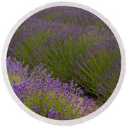 Early Morning Lavender Round Beach Towel