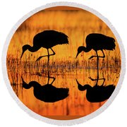 Early Morning Sandhill Cranes Round Beach Towel