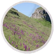 Early Purple Orchids In The Derbyshire Dales Round Beach Towel