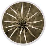 Early Thistle Round Beach Towel