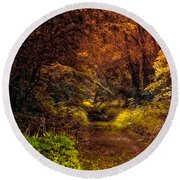 Earth Tones In A Illinois Woods Round Beach Towel