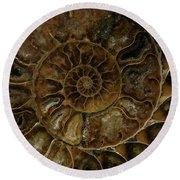Earth Treasures - Brown Amonite Round Beach Towel