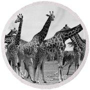 East Africa: Giraffe Round Beach Towel