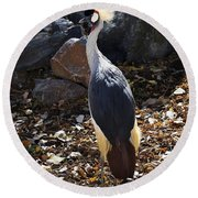 East African Crowned Crane Round Beach Towel