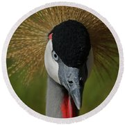 East African Crowned Crane Upclose Round Beach Towel
