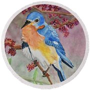 Eastern Bluebird Vertical  Round Beach Towel