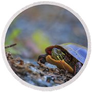 Eastern Painted Turtle Chrysemys Picta Round Beach Towel
