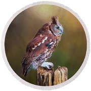 Eastern Screech Owl Red Morph Profile Round Beach Towel