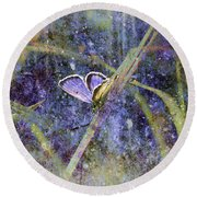 Eastern Tailed Blue Round Beach Towel