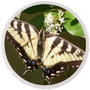 Eastern Tiger Swallowtail  Butterfly Wingspan Round Beach Towel
