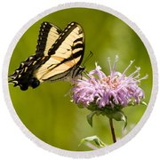Eastern Tiger Swallowtail Round Beach Towel