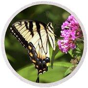 Eastern Triger Swallowtail Round Beach Towel