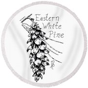 Eastern White Pine Cone On A Branch Round Beach Towel