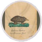 Echidna Hystrixder Ameisen-igel The Spiny Echidna In Neuholland Round Beach Towel