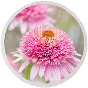 Echinacea Butterfly Kisses Round Beach Towel