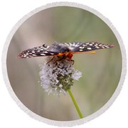 Edith's Checkerspot Four Round Beach Towel