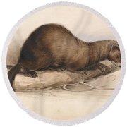 Edward Lear - A Weasel Round Beach Towel