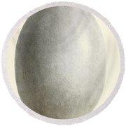 Egg Of Dinornis, Giant Moa, Cenozoic Round Beach Towel