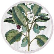 Eggplant, 1735 Round Beach Towel