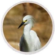 Egret 3 Round Beach Towel