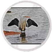 Egret And Cormorant Wings Round Beach Towel