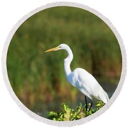 Egret At The River Round Beach Towel