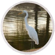 Egret At Waters Edge Round Beach Towel