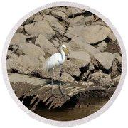 Egret Fishing Round Beach Towel