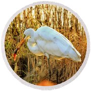 Egret Fishing In Sunset At Forsythe National Wildlife Refuge Round Beach Towel