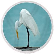 Egret Foot Inspection Round Beach Towel