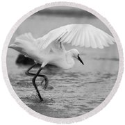 Egret Hunting In Black And White Round Beach Towel