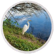 Egret In Florida Color Round Beach Towel