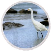 Egret Patrolling Round Beach Towel