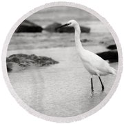 Egret Patrolling In Black And White Round Beach Towel