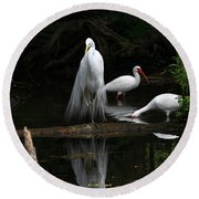 Egret Reflection Round Beach Towel
