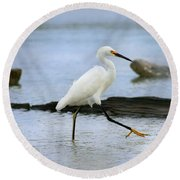 Egret Step Round Beach Towel