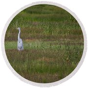Egrets In A Field Round Beach Towel