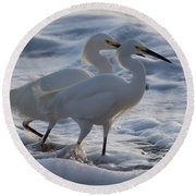 Egrets In The Shallows Round Beach Towel