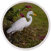 Egret's Meal Round Beach Towel