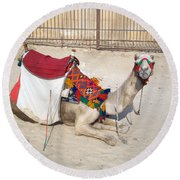 Egypt - Camel Round Beach Towel