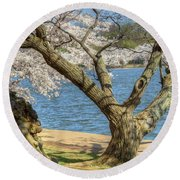 Elder Cherry Tree Round Beach Towel