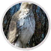 Elder Hawk Round Beach Towel
