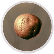 Electrum Nugget, C1100 B.c Round Beach Towel