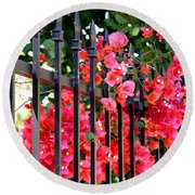 Elegant Fence Round Beach Towel