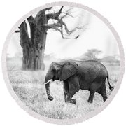 Elephant And Baobab Round Beach Towel