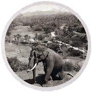 Elephant And Keeper, 1902 Round Beach Towel